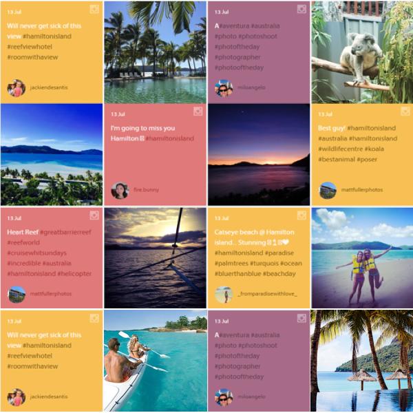 Website Social Wall